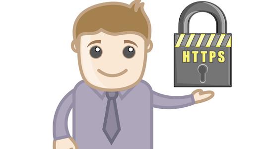 ssl证书的作用只是http变成https吗