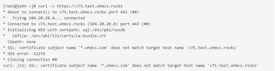 SSL监控案例