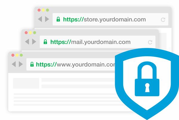 通配符证书浏览器展现形式